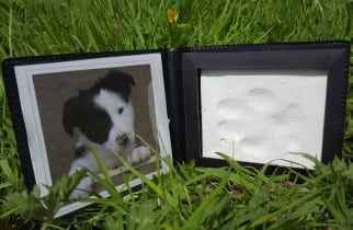 Caskets and Urns Clay Paw Print Cast